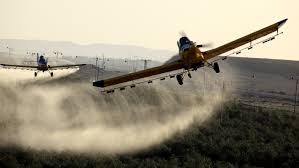 Government adds three planes to fight desert locusts ravaging 26 counties