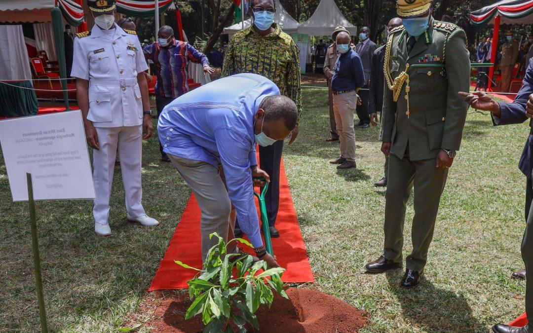 President Kenyatta pays Tribute to Wangari Maathai as He Leads the Nation in Marking World Environment Day
