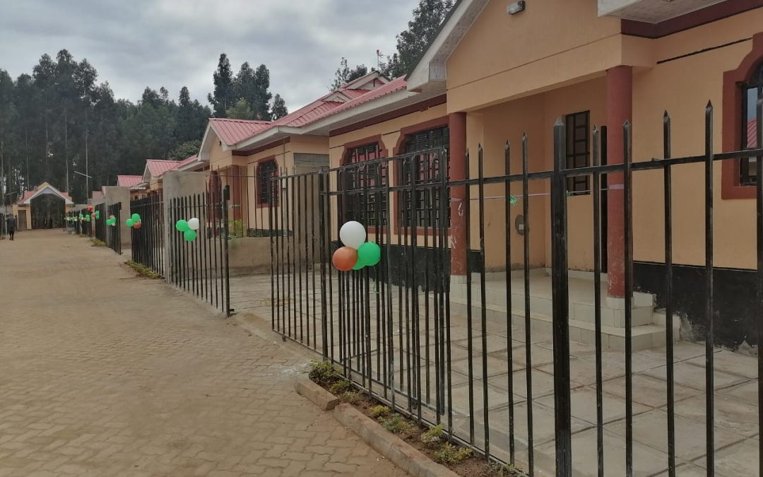 Mizizi Africa Homes projects real estate uptake by young generation
