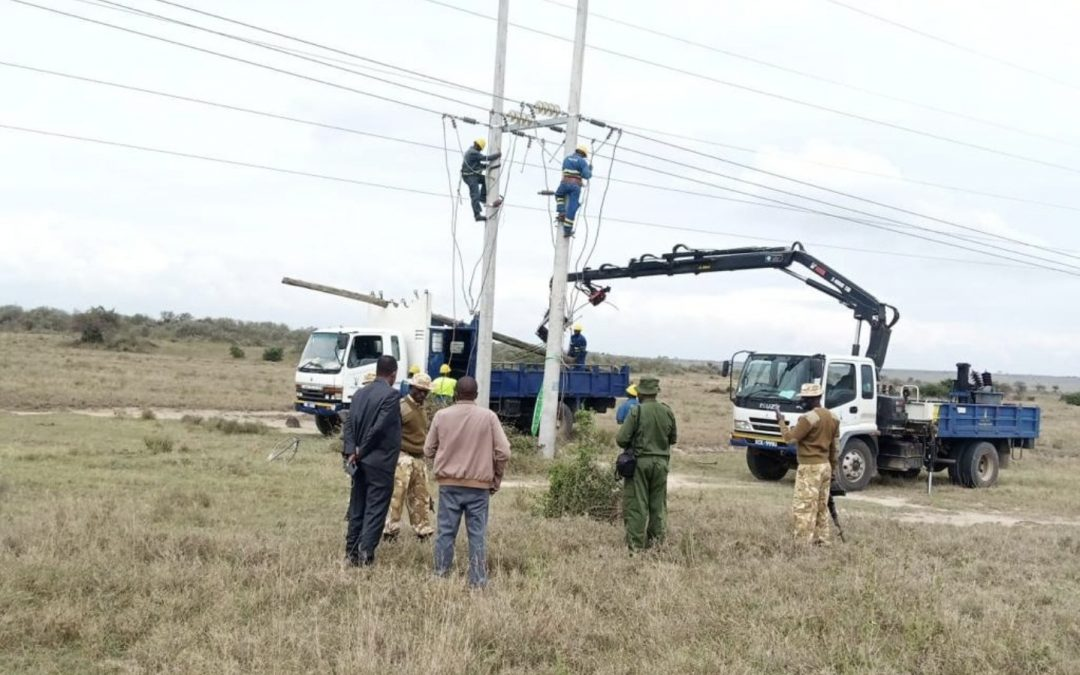 Kenya Power clears electric poles in parks to prevent wild animals electrocution